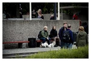 ©Håkon Borg/MAGPIE